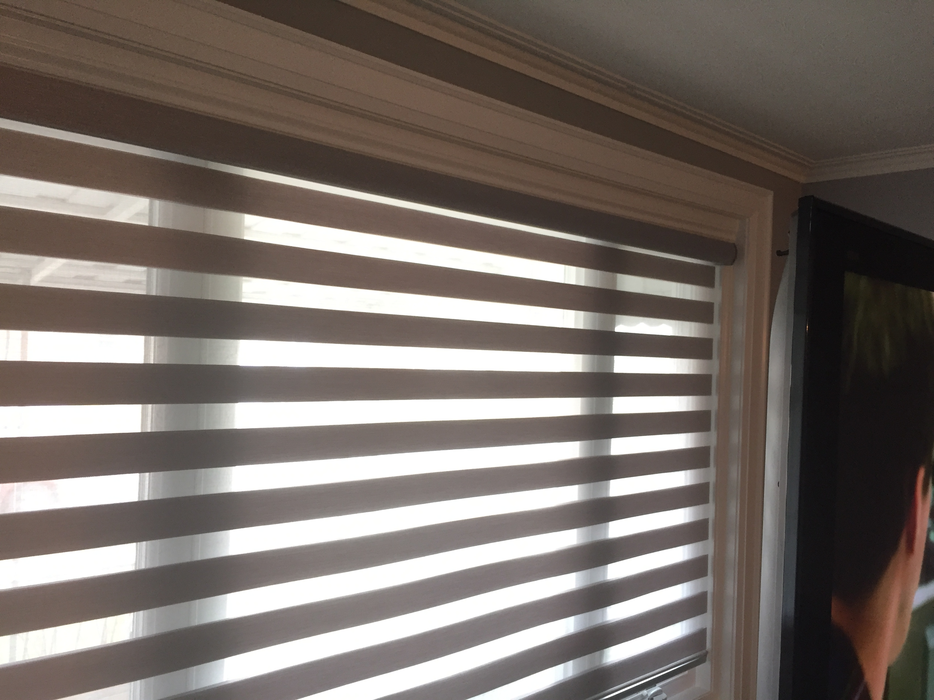 fabric bnd mackintosh banded shades drapery detail palm blinds ug