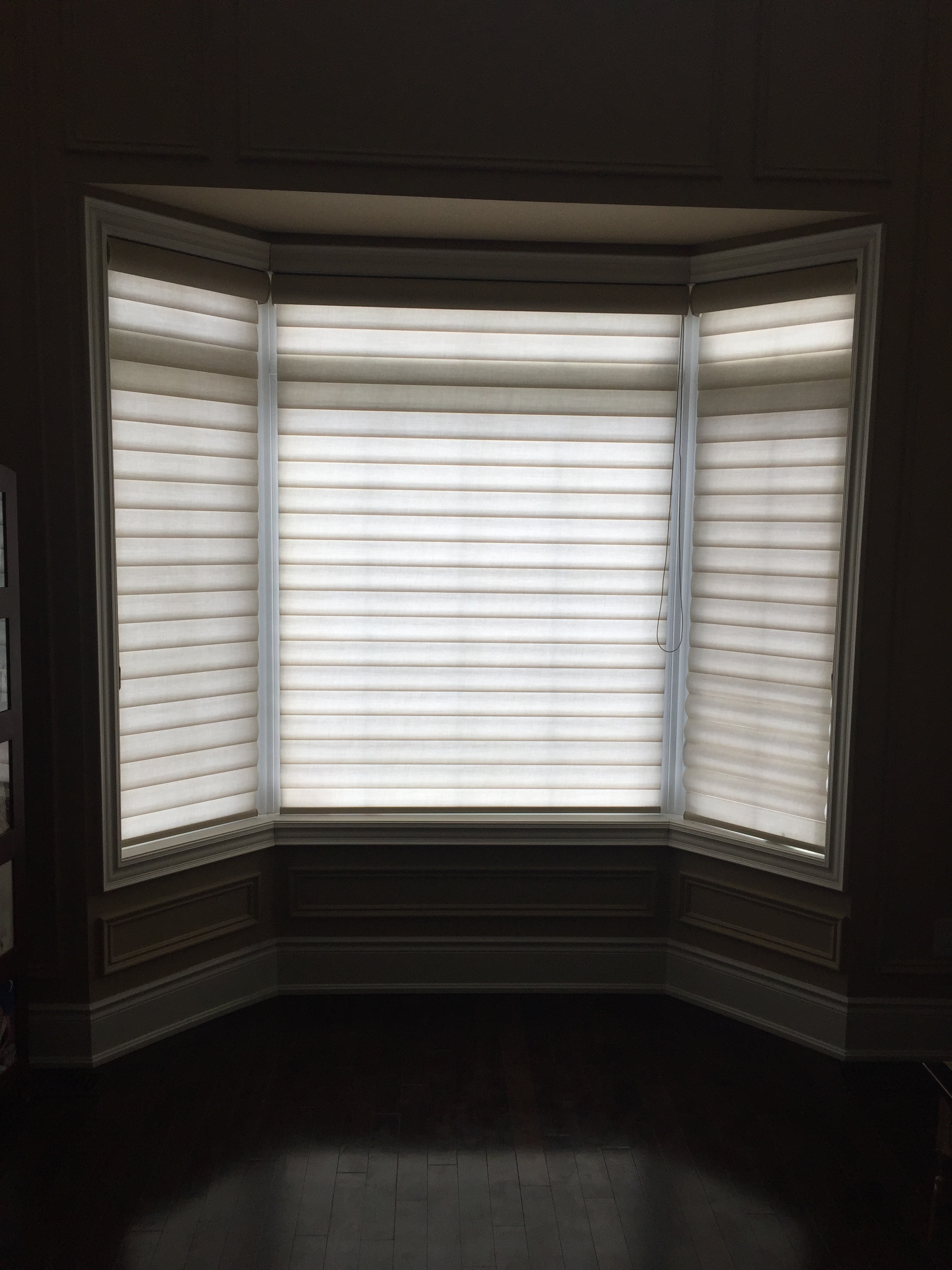 with powerrisetwoone livingroom douglas pirouette powerrise blinds shades in richmond lynn hunter