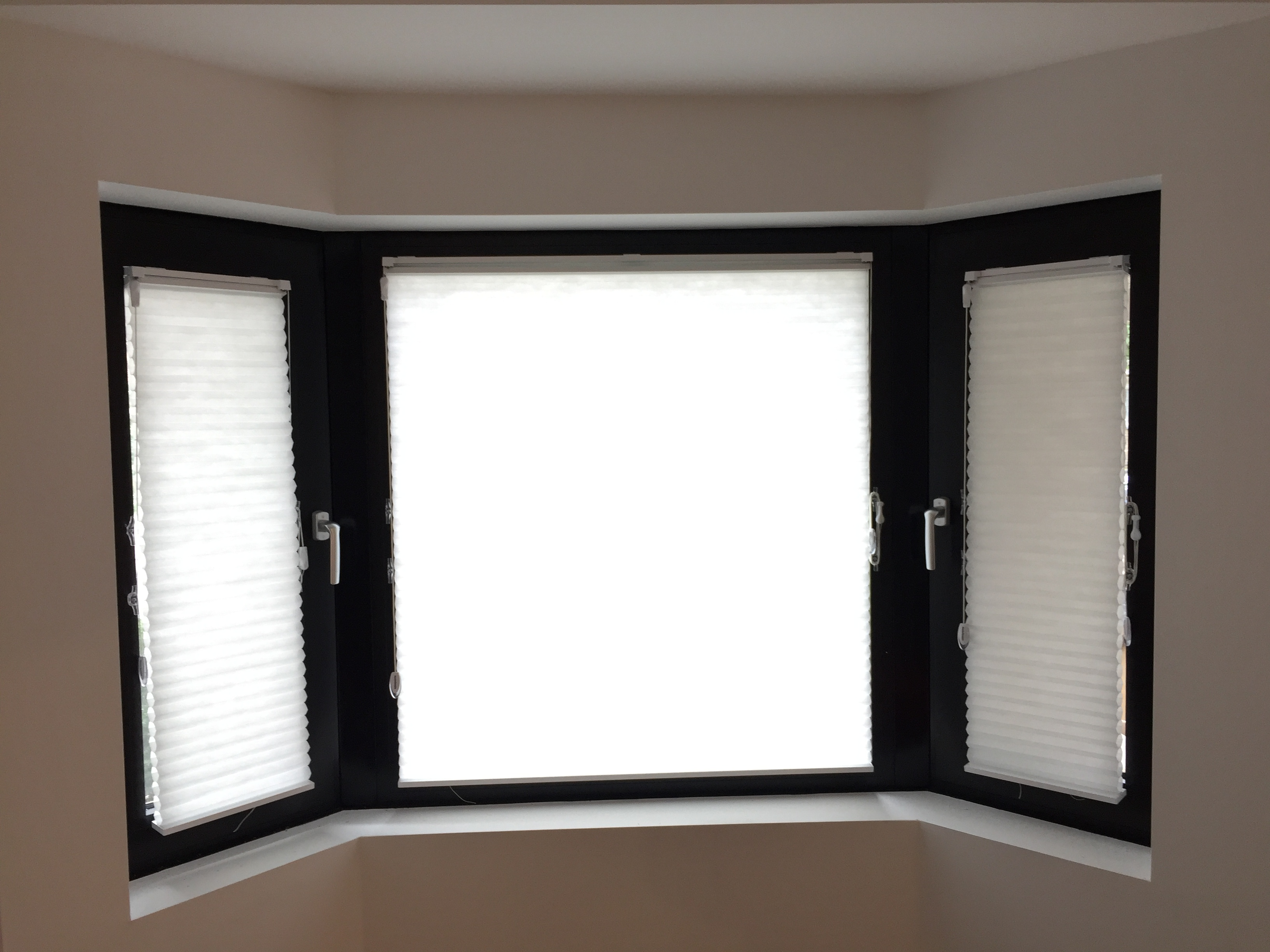 window wayfair shade stuff reviews chocolate treatments light pdx cellular symple blinds filtering